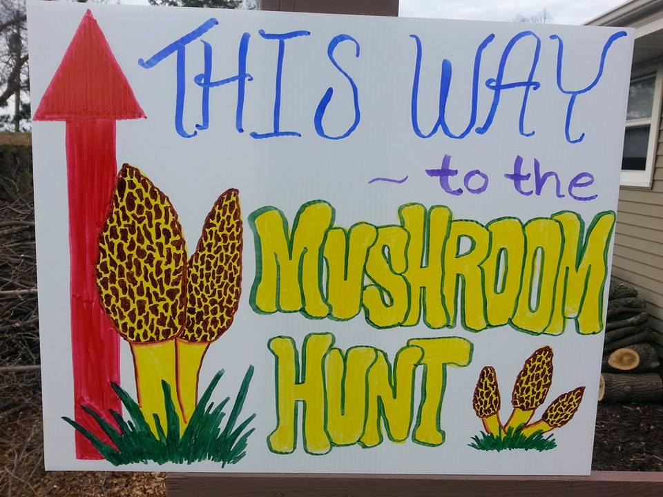 Get Tickets Now: Morel Mushroom Hunt & Alzheimer's Fundraiser